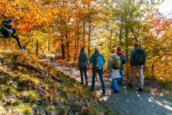 Die schönsten Wanderwege im Herbst