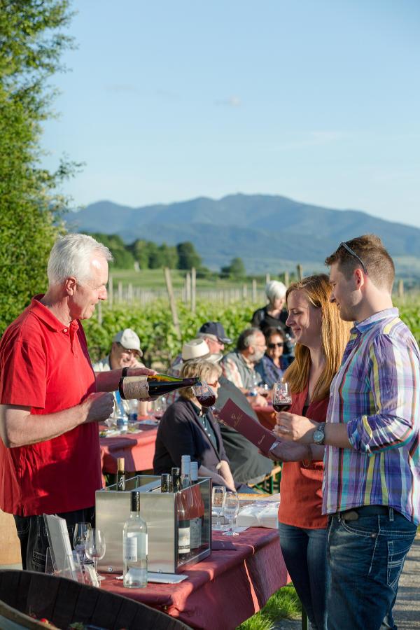 Kulinarische Weinwanderung auf dem Weinerlebnispfad in Bad Krozingen