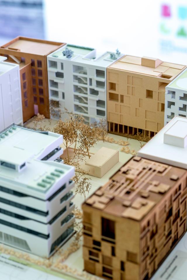 BUGA trifft Bauhaus - Eine blühende Zukunft