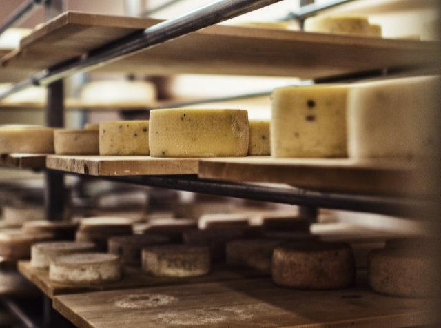 Reif für die Alm - Käse von Südtirols Bergbauernhöfen