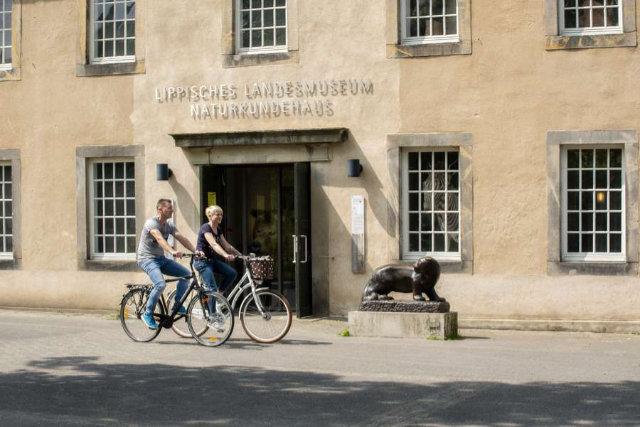 Beim Radfahren Kulturschätze im Teutoburger Wald entdecken