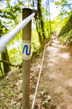 Wanderexpedition durch die Heimat auf dem Neckarsteig