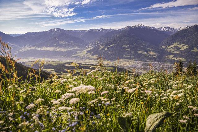 Bergsommer 2020 in der Ferienregion Hall-Wattens