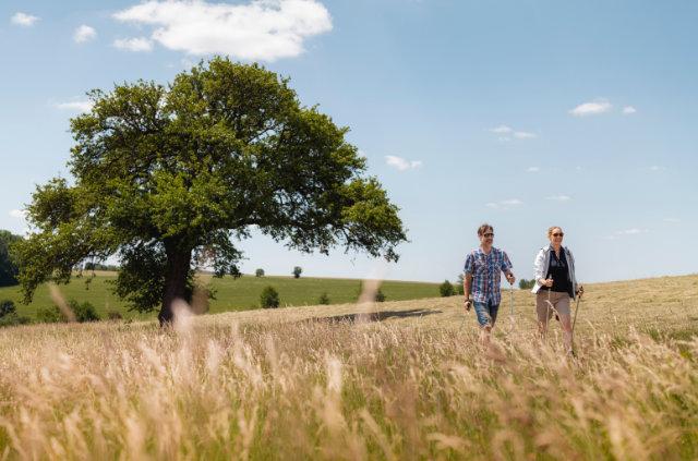 Nachhaltiges Bad Mergentheim - Urlaub für die positive Öko-Bilanz
