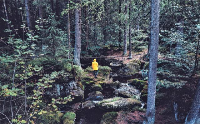 Qualitätswanderweg am Ochsenkopf im Fichtelgebirge zertifiziert