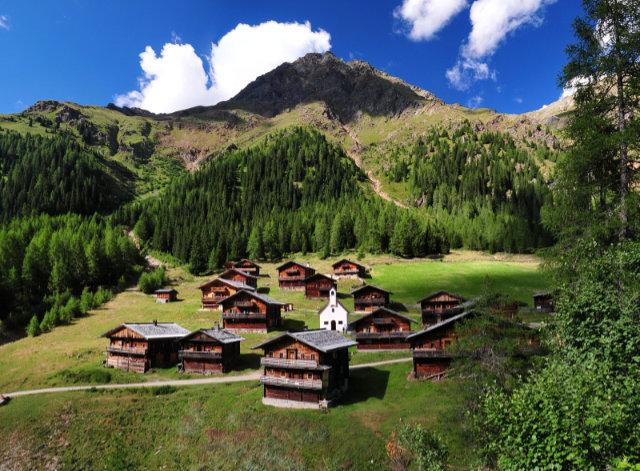 Farbenspiel der Natur beim Osttiroler Berg- und Genussherbst