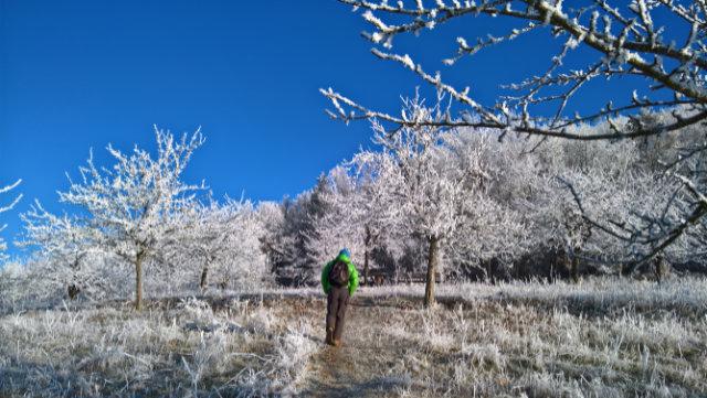 Aktive Erholung mit Winter-Wandern im Romantischen Franken