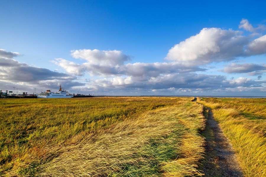 Auf in die Freiheit an Ostfrieslands Küste