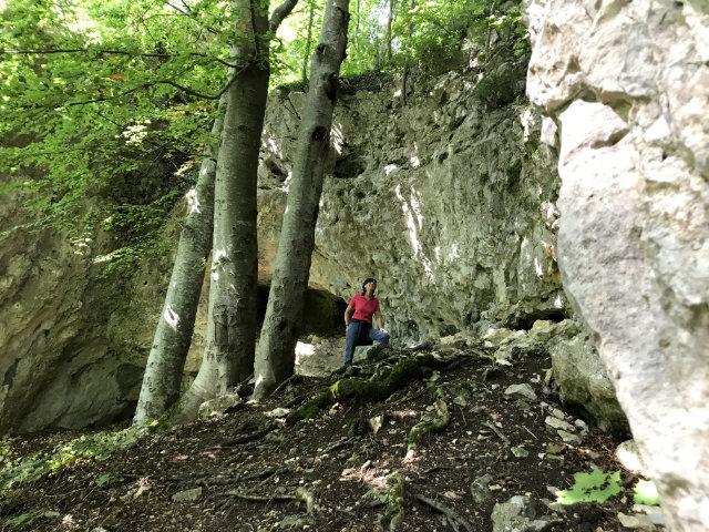 Wandererlebnis Eiszeitpfade im Alb-Donau-Kreis