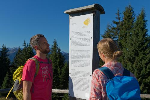 Ich gehe, also bin ich:  Unterwegs auf dem Meditationsweg Ammergauer Alpen