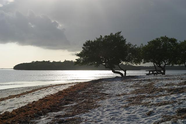 Familienurlaub in den USA - Florida für Familien