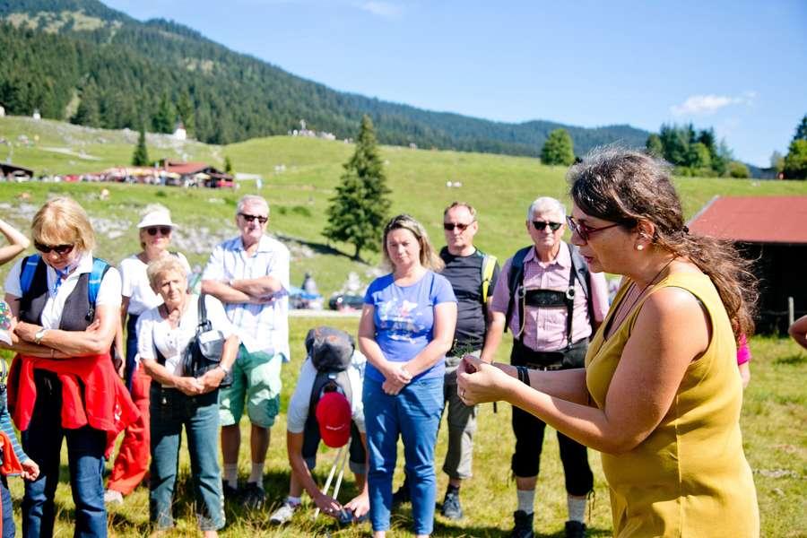 Vom Suchen und Finden alpiner Kraftquellen im Chiemgau