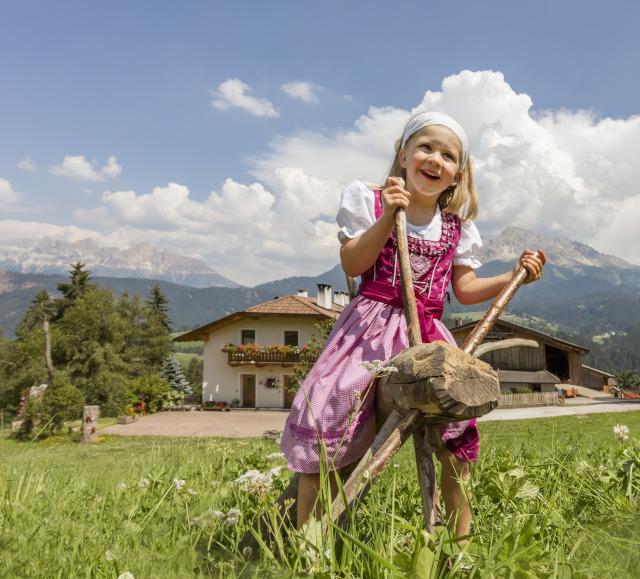 Roter Hahn - Workation beim Südtiroler Bauern