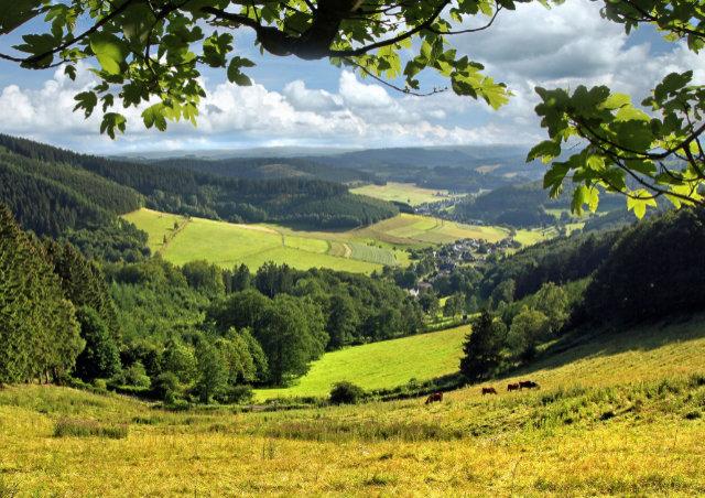 Auf einem Weg, aber mit vielen Möglichkeiten rund um Hilchenbach