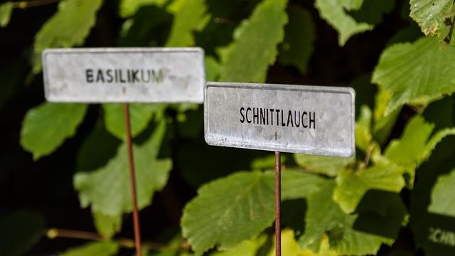 Bauernherbst 2021 im Salzburger Land im Zeichen der Natur