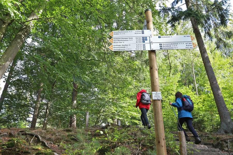Wald, Wasser und tolle Wanderwege im Schatten Hermanns